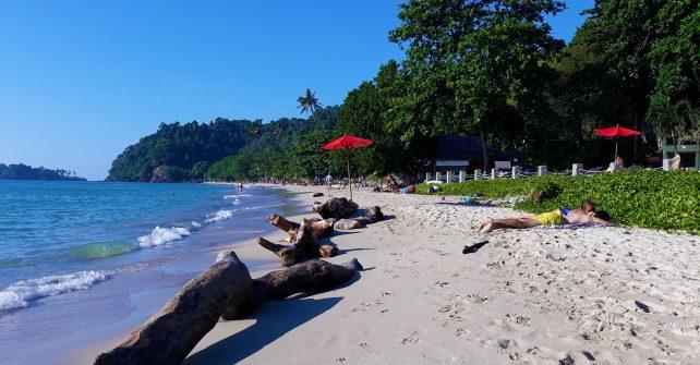 People Sunbaking on Beach